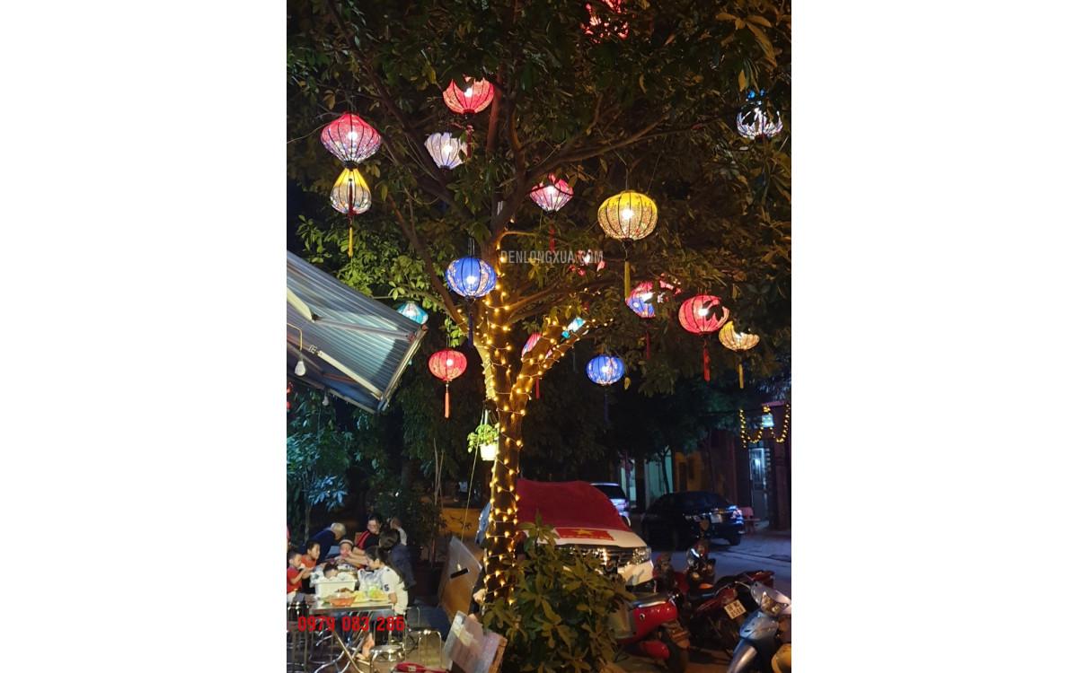Chào mừng năm mới với đèn lồng trang trí cây